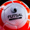 FAI/FINGAL FUTSAL For u8s to u16s