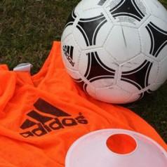 Scottish FA blogs